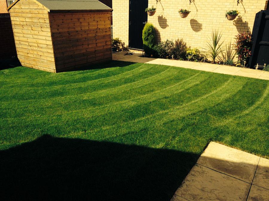 Peterborough lawn 2