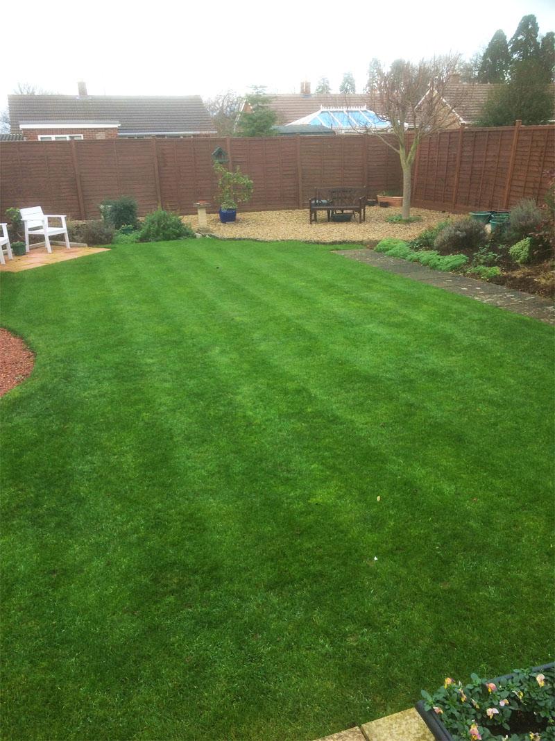 Peterborough lawn 4