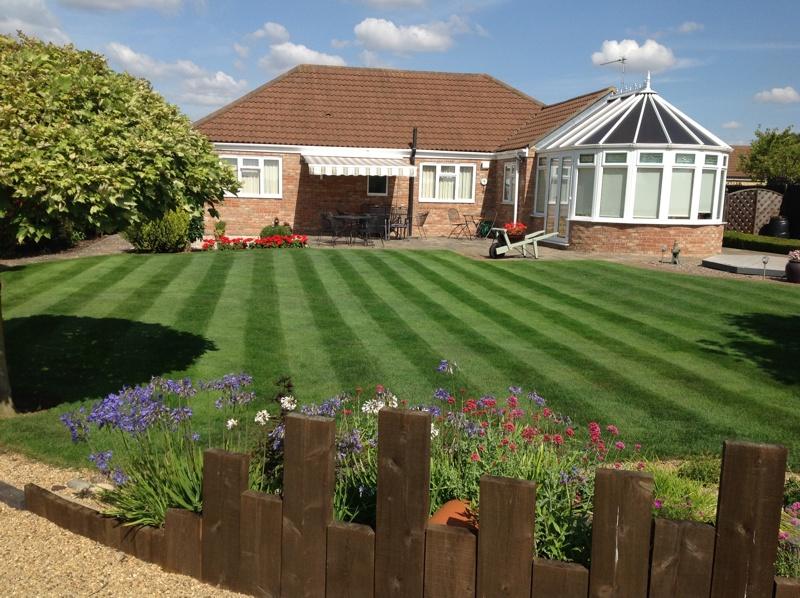 Peterborough lawn 3