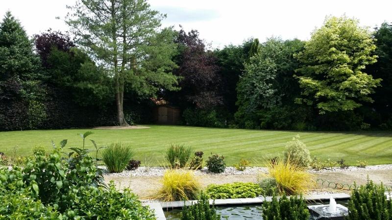 Nottingham lawn6