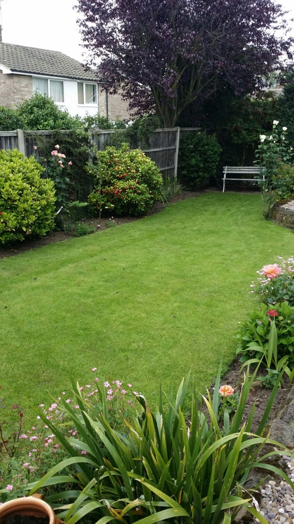 Nottingham lawn7