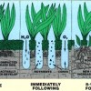 The benefits of aerating your lawn