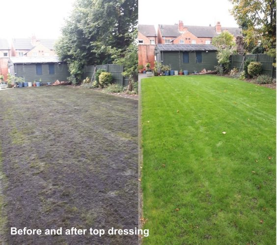 soden-topdress-before-after