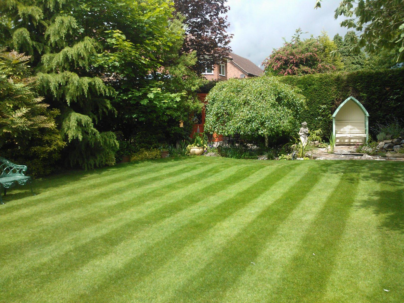 EY Lawn 1
