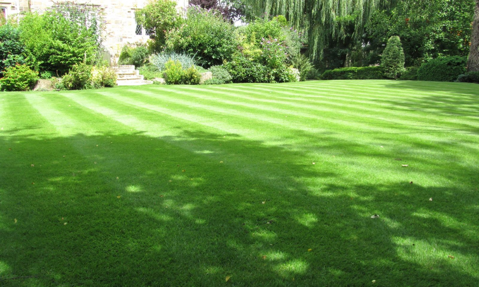 West Yorkshire lawn 1