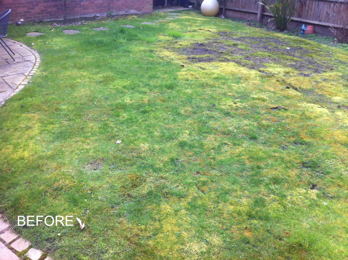 Aylesbury lawn 1 before