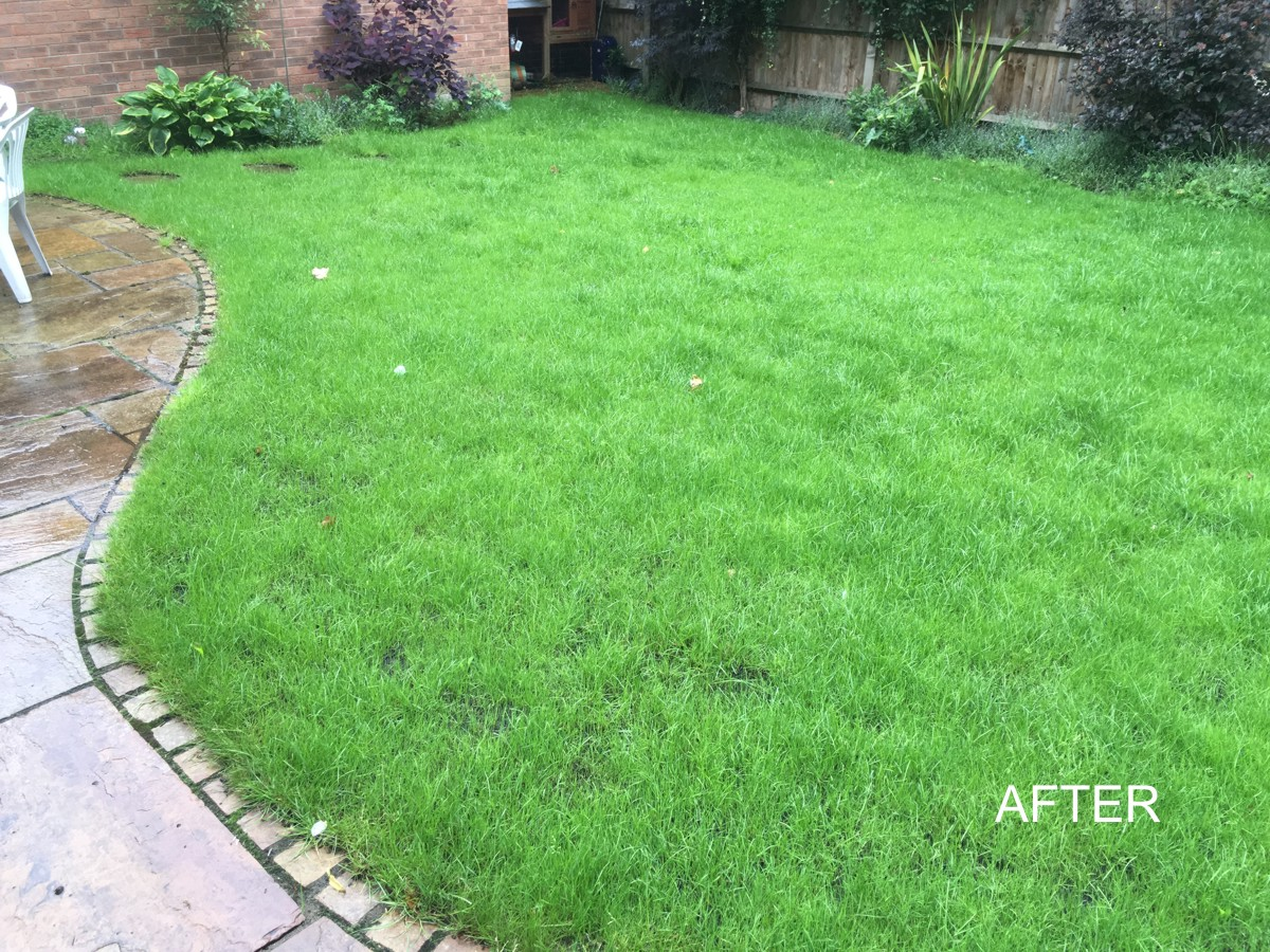 Aylesbury lawn 1 - after