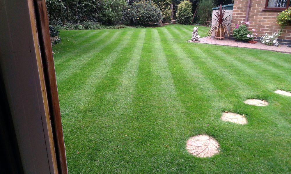 Nottingham lawn8