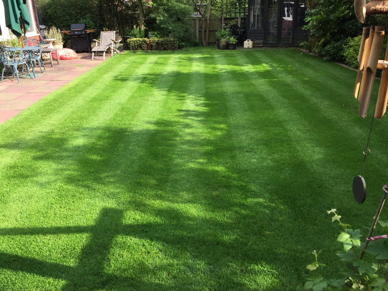 Stafford lawn 2