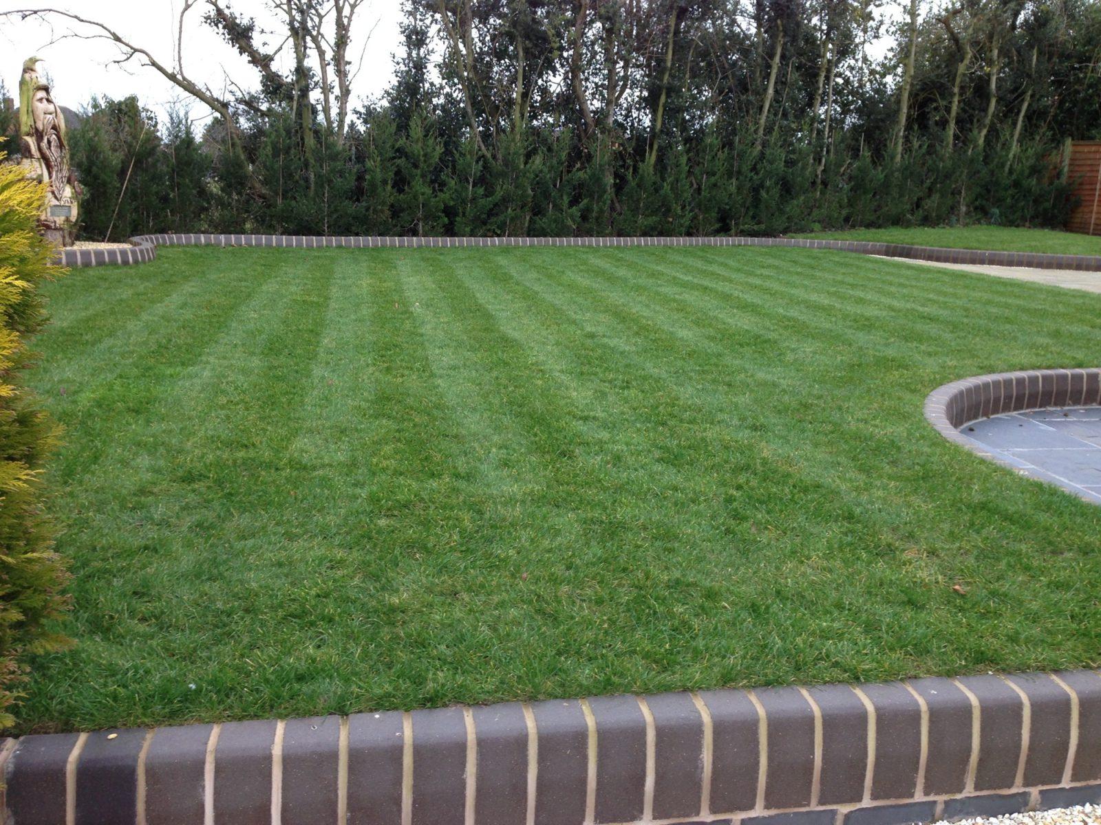 Stafford lawn 1
